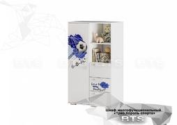 Шкаф многофункциональный Трио ШК-10 Король спорта